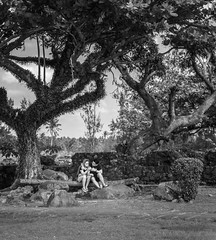 Courtship under the salaysay tree (FotoGrazio) Tags: freetodownload composition photographersinsandiego fotograzio digitalphotography capture younglove waynegrazio pair photography firstdate photographersincalifornia stonewall streetphotography freeimage pinoy pacificislanders dating bicol waynesgrazio streetscene freepicture photoshoot documentaryphotography filipino albay conversation philippines flickr worldphotographer sandiegophotographer together californiaphotographer romance artofphotography explore downloadforfree people couple 500px youngcouple partners internationalphotographers blackandwhite photographicart socialdocumentary