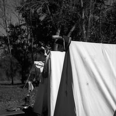52:500c - Week 41 - Battle Ground (.:Axle:.) Tags: 52500c 52rollsnet project 52rollproject marion indiana usa mississenawa1812 warof1812 reenactment mississenawa history americanhistory militaryhistory event shopping reenactors camping camp tourist hasselblad hasselblad500c slr 6x6 120 square mediumformat carlzeissplanar80mm128 rollei rolleirpx25 rpx25 asa25 kodakhc110 hc110 dilutionb b gossenlunasixf adobephotoshopcc epsonv700 film filmphotography bw blackwhite believeinfilm filmisnotdead filmisalive