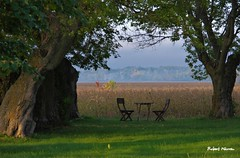 Invitation  la dtente... / A place to relax... (Pentax_clic) Tags: imgp7221 pentax kr automne octobre 2016 robert warren anse vaudreuil quebec oasis repos arbre tranquilit matin
