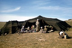 Tent of Awlad MeymunTribe near Aflou, Algeria, 1954 (Benbouzid) Tags: 1954 tent tribe habitat mobilit tente pilon   transhumance   nomades   aflou laghouat