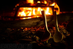 Dark Hollow (alex.yerks) Tags: trees leaves forest leaf spring woods spoon carving growth bark axe birch forged treen bushcraft kuksa