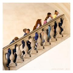 Go up (Luca Cesari) Tags: stairs nikon young scala nikkor f28 d800 goup scalinata salire afs2470