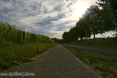 Ede Barteweg (Manuel Speksnijder) Tags: ede barteweg natuur nature landschap zon ondergaandezon settingsun sun