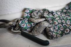 Grandma's Gardening Gear (SarahJKelleher) Tags: gardening gloves tools shears dof depthoffield bokeh green dirty nikon nikond7200 nikon35mm 35mm lightroom