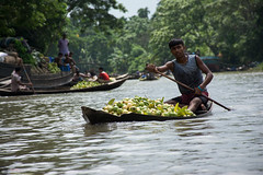 A young guava trader in Barisal who has come to sell his guava (Manzur Ahmed) Tags: barisal floating market guava swarupkanthi outdoor travel august nikon d7100 18140 2016
