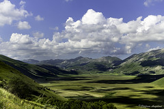 Castelluccio di Norcia (Angeloni Photographer) Tags: sibillini green landscape land monti natural agriculture scenic castelluccio umbria nature norcia rural sky mountain park landmark italian vettore grass plant flower floral color blue colorful flowers