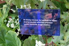 Zomer in de Leuvense Kruidtuin (Kristel Van Loock) Tags: zomer2016 summer2016 kruidtuin leuvensekruidtuin kruidtuinleuven zomerindekruidtuin september2016 botanicalgarden botanischergarten botanischetuin jardinbotanique jardinbotaniquedelouvain giardinobotanico lovanio lovaina louvain lwen vlaanderen vlaamsbrabant flanders fiandre brabantflamand brabantefiammingo flemishbrabant visitleuven seemyleuven leveninleuven cityofleuven leuvencity visitflanders visitbelgium hortusbotanicuslovaniensis poetry pozie poesia