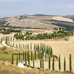 Curvy Road (Luca Carnesciali) Tags: valdorcia siena italia toscana tuscany italy orcia landscape country road asciano discovertuscany