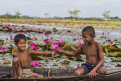 B_7D__67493 (HamimCHOWDHURY  [Active 01 Feb 2016 ]) Tags: dhaka bangladesh framebangladesh canon eos dslr gitzo3541ltripod novoflexnqballhead bw hoya hddb 2012 september