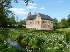 Kasteel van Dussen in het voorjaar - Castle Dussen in spring (Cajaflez) Tags: castle kasteel dussen voorjaar spring landvanaltena thenetherlands coth5