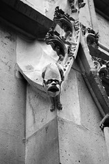 KL3M7243 (FR4GIL3) Tags: france rouen pentax k5 architecture gargouille gargoyle sculture beast bte extrieur