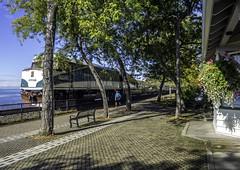 Other end (Tony Tomlin) Tags: whiterockbc whiterockstation amtrak amtrakcascades npu bnsf station britishcolumbia canada 90340