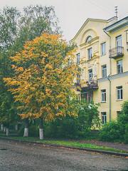 Kostroma (andrey.senov) Tags: russia kostroma province street city trees cloudy morning autumn fall september green yellow             fujifilm fuji x10 fujifilmx10 pavement  10faves