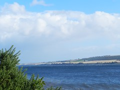 Cromarty Firth, near Dingwall, Sep 2016 (allanmaciver) Tags: cromarty firth black isle easter ross coast sea water blue clouds fields tree flow fast wind allanmaciver