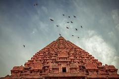 Brihadeeswarar Temple, Tanjore (Premnath Thirumalaisamy) Tags: tanjore brihadeeswarar temple big south india tamilnadutempleindiaincredible un heritage site wonders minimal