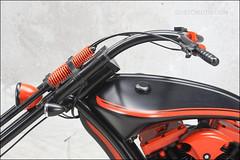 bikes-2009world-126-e-l