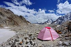 Karpogoro: Sun baked (Shahid Durrani) Tags: karakoram karakorams central national park baltistan pakistan biafo glacier