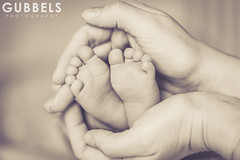 Valentin_02 (Gubbels Photography) Tags: rot baby love mother mutter gubbels photography cgp canon 5d l ef hamburg germany deutschland alster liebe kind neugeborenes newborn young jung sweat ss fse feet sweet junge boy hnde infant