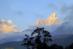 Abendstimmung bei der Lodge in Tengboche (Alfesto) Tags: nepal wanderung trekking himalaya namche khumbuarea sagarmathanationalpark tengboche mtamadablam
