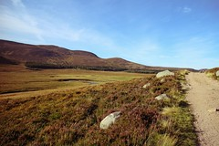IMG_0352 (LezFoto) Tags: gravelroad road royaldeeside glenmuick glenmuickestate mountians grass heather rock rocks canon eosm