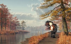 Pinto Horse on a Riverside Trail (deskridge) Tags: pinto horse autumn mustang pintohorse pintomustang fall river western americanwest wildwest spottedhorse brownandwhitehorse drafthorse stallion wildhorse equine horseart horsetheme horsesymbol horseenthusiast romantichorse feralhorse brown orange gold seasonal eskridge danieleskridge