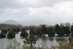 Flooded fields, Tillimook, Oregon US (nikname) Tags: tillimook tillimookoregon floods floodedfields tillimookweather