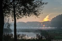 Wizard hat sunrise (vincentverdult) Tags: zuidholland thenetherlands plant fog sunrise tree bieslandsebos lake