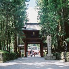 R1-08   (redefined0307) Tags:        zenzabronicas2 bronicas2 zenzabronica fujifilmpro400h mediumformat japan nikko worldheritage shrine