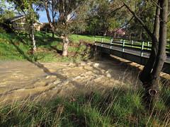 Floodwaters under the golf bridge (troggonk) Tags: ginnderra creek act sept 2016 ngunnawal gungahlin water erosion maintenance