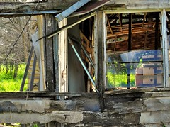 window blues, hww (holly hop) Tags: farm ruraldecay rural sheds farmshed derelict abandoned empty australia centralvictoria rusty rustyandcrusty wooden dilapidated ruins farming disorder hww newwallwednesday wall walls windowwednesday windows