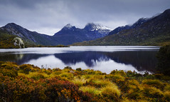Cradle Mountain and Dove Lake (Justin Barr's Photos) Tags: tasmania cradle mountain dove lake