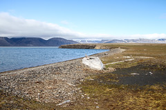An old rowing boat at Bamsebu IMG_9369 (grebberg) Tags: bamsebu ahlstrandhalvya spitsbergen svalbard july 2016 rowingboat boat tundra kapptoscana