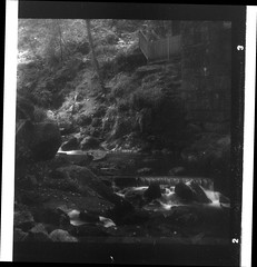 Kennall Vale [Gnome Pixie] (Mr B's Photography) Tags: longexposure river stream kennallvale cornwall blackandwhite film fomapan gnome pixie paranol
