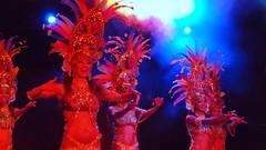 P9244776 (Art & Nice) Tags: brasil tropical olympus xz1 paris plume