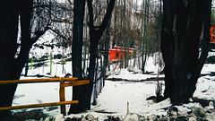 Paraso en mi enfoque (Jons J.) Tags: nieve nature street city love like4like like photo g promise good spring