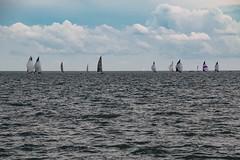 Sails on the horizon (rick miller foto) Tags: sky clouds water lake harbour harbourfront horizon sailing sails ontario toronto