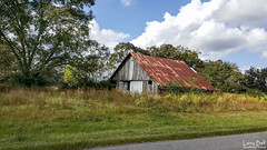 20161016_135313(0) (SouthernPhotos@outlook.com) Tags: larrybell larebell larebel southernphotosoutlookcom barn phillipsville baldwincounty alabama tinroof