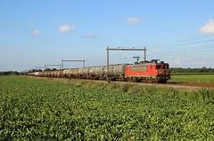 Loon (treineninhetnoorden) Tags: 1616 db dbs dbc railion ns 1600 loon kijfhoek onnen assen 61300 goederentrein cargo