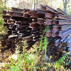 Discarded rails from the Catskill Scenic Rail Trail    #518life #518 #518fam #518strong #asdf88 #catskill #mountain #hike #nature #outdoors #hiking #catskills #asdf88 #iheartnewyork #newyork #upstateny #iloveny #mountains #getoutside #scenic #railtrail #r (malcolmpk88) Tags: instagramapp square squareformat iphoneography uploaded:by=instagram 518life 518 518fam 518strong asdf88 catskill mountain hike nature outdoors hiking catskills iheartnewyork newyork upstateny iloveny mountains getoutside scenic railtrail rail iron