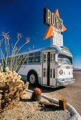 The Last Stop on the Line (dejavue.us) Tags: roys 2003 slide scan bus cactus sign mojavedesert neon film amboy route 66 route66 california