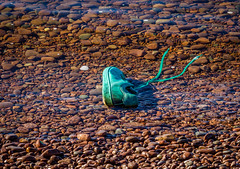 Lost (Superali007) Tags: canon canon7d ef100mmf28lisusmmacro shoe water shore turquoise shoelace discarded