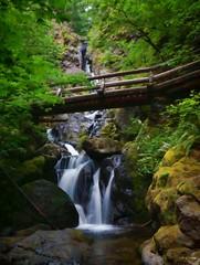 Hardy Falls lower (rovingmagpie) Tags: washington stevenson hamiltonmountaintrail hardyfalls waterfall painted bridge falls touregon summer2016