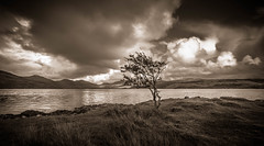 I'm not alone because loneliness is always with me. (Ian Emerson) Tags: tree lonely water clouds mountains hills landscape outdoor omot scotland wideangle canon 1018mm