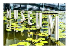 Museum (red stilletto) Tags: singapore marinabay marinabaysands museum artsciencemuseum artsciencemuseumsingapore waterlillies