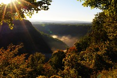 Letchworth Gorge, NY (Circled Thrice) Tags: letchworthgorge letchworthstatepark statepark park geneseevalley geneseeriver fog clouds sunrise sunlight sunflare trees autumn fall mist morning light alleganycounty newyork ny canon eos rebel t3i sigma landscape outdoors outside serene