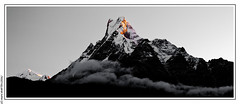 Sunrise on the Machhapuchhre (6 993 m) (L'Abominable Homme de Rires) Tags: annapurna npal trek atalante montagne landscape montain machhapuchhre mardihimal kalidanda gangapurna
