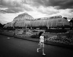 Kew Gardens (stefanopad82) Tags: london uk england britin child girl running serra greenhouse kew gardems bw black white nikon d750 tamron 2070 f28