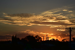 More power poles than you can poke a stick at (Images by Jeff - from the sea) Tags: nikon d7200 dusk trees twilight sunset palmtrees powerlines powerpoles goldensunset goldenhour tamronsp2470mmf28divcusd bluesky bundaberg orange october 500v20f 1000v40f topf25