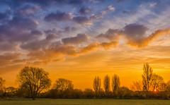 The Dawn (jactoll) Tags: trees clouds sunrise landscape dawn nikon day cloudy warwickshire stratforduponavon d7000 jactoll nikcolorefexpro4