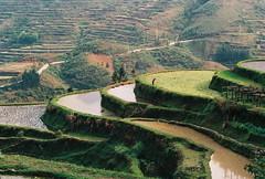 Southeast Guizhou-Jiabang terraced fields (Lijun Yao) Tags: fields southeast terraced guizhoujiabang